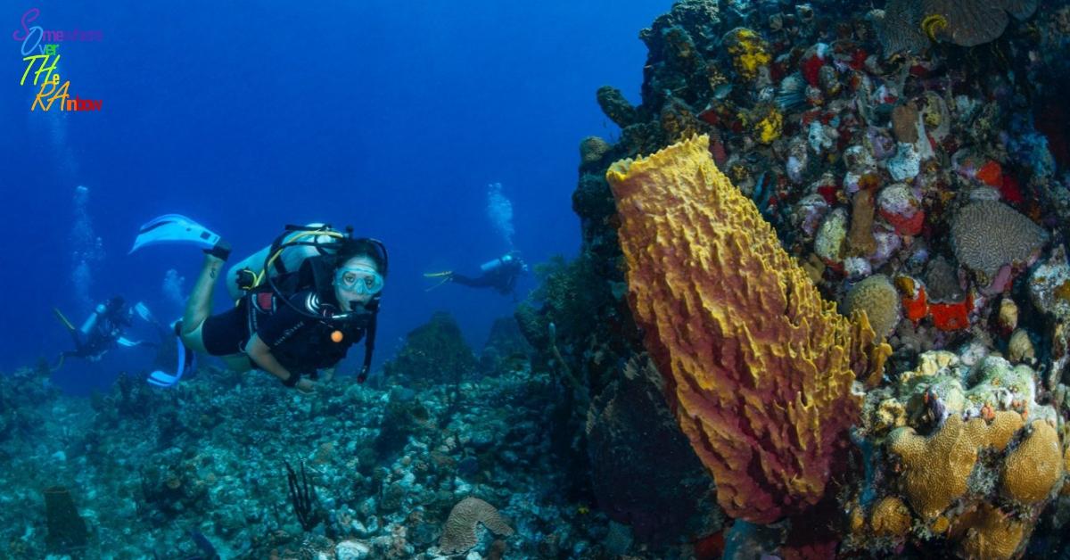 Vacanza a DOMINICA